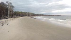 Figura 2. Otra playa más donde bañarme antes de que se conviertan en mortales