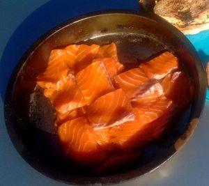 SalmonLove